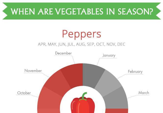 When Are Vegetables In Season Main