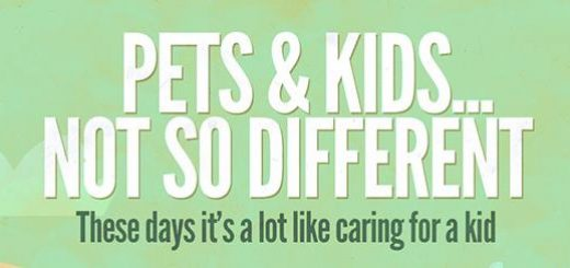 Pets & Kids... Not So Different Main