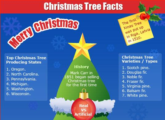 christmas tree facts justinfographics